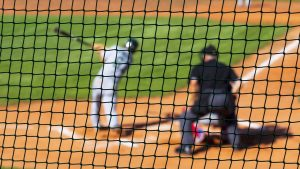 The Importance of Sports Netting